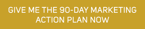 Give-Me-the-90-Day-Marketing-Action-Plan-Now-Button